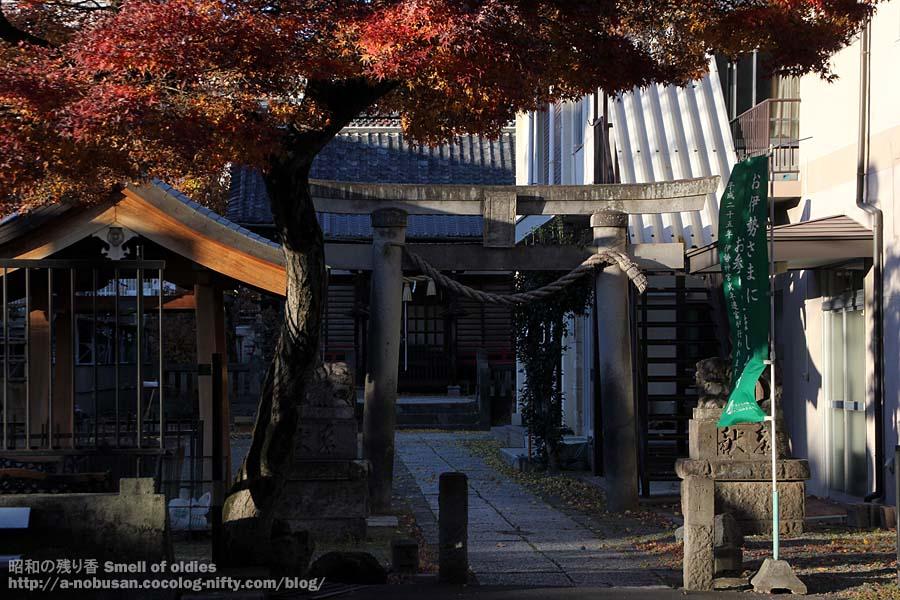Img_0098_maebashi_suwajinjya