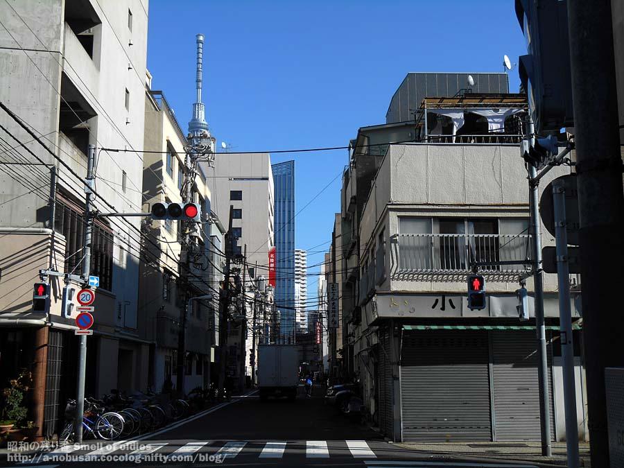 Dscn1229_kaminarimon_skytree