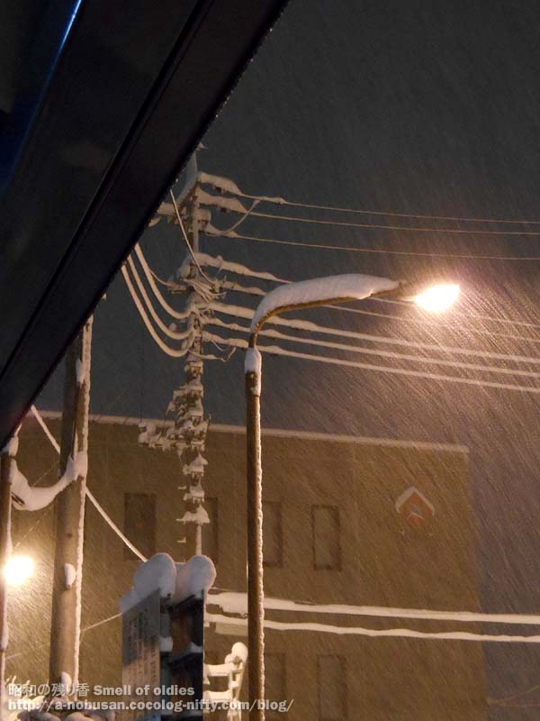 Dscn5291_snow_densen