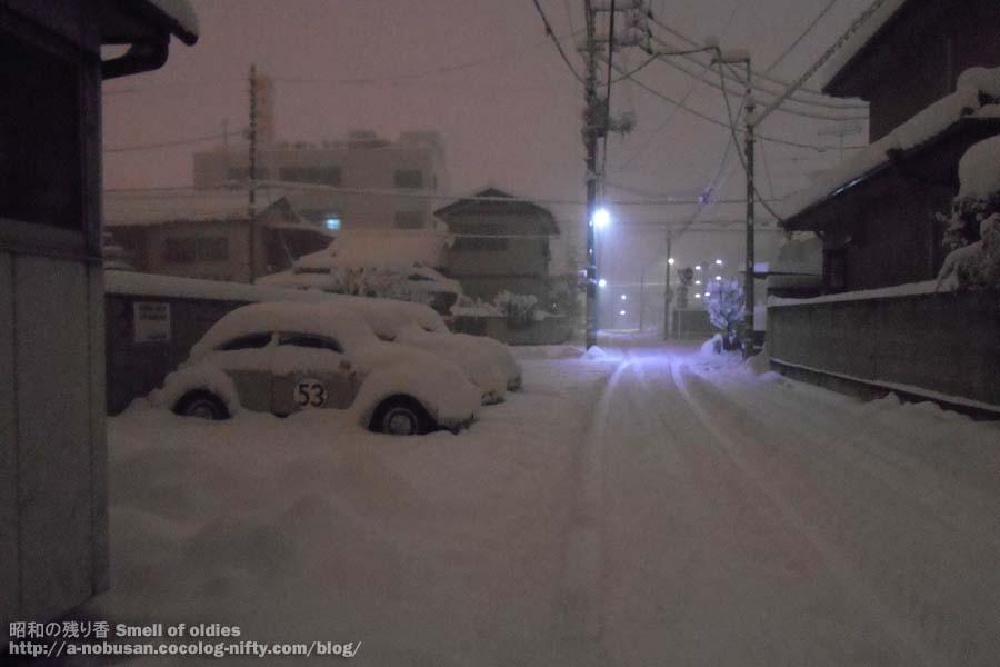 Dscn5305_snow_3vws