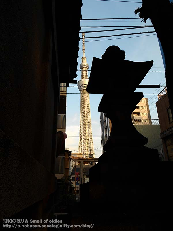 Dscn2735_ushijimajinjya_skytree