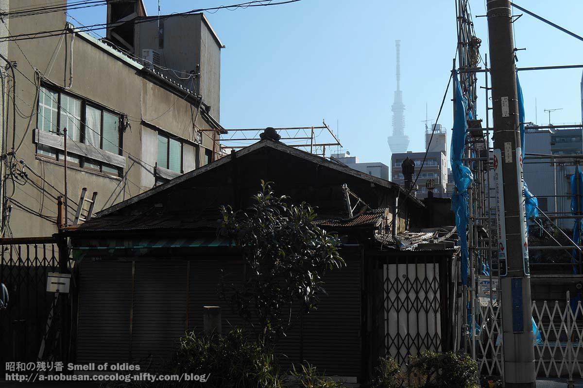 Dscn9252_tokyo_shitamachi_skytree