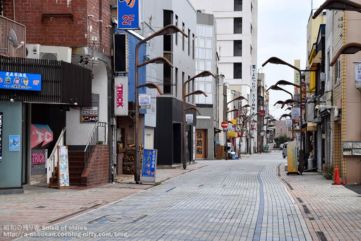 Dsc_0267_ginzadori_maebashi