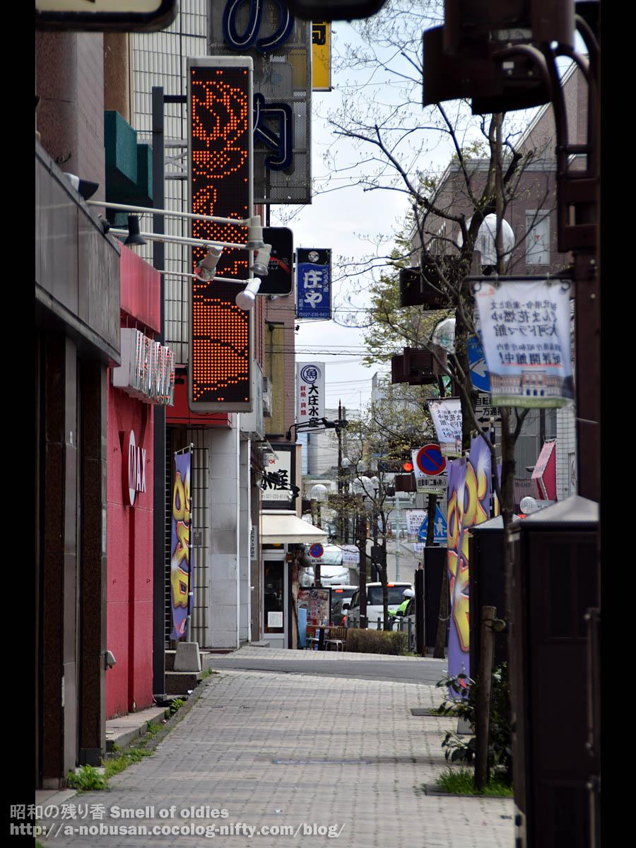 Dsc_0291_syoya_taishosuisan_maebash
