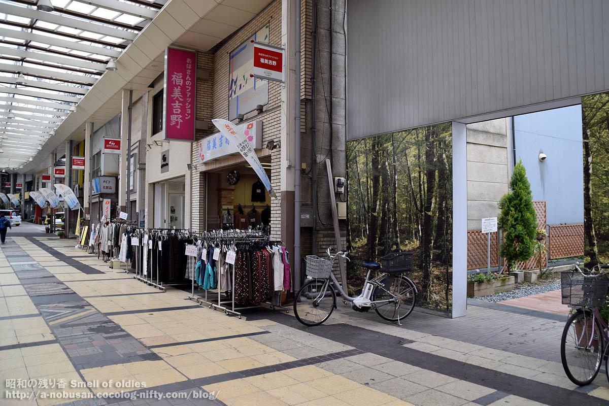 Dsc_0333_yoshino_maebashi_chuodori