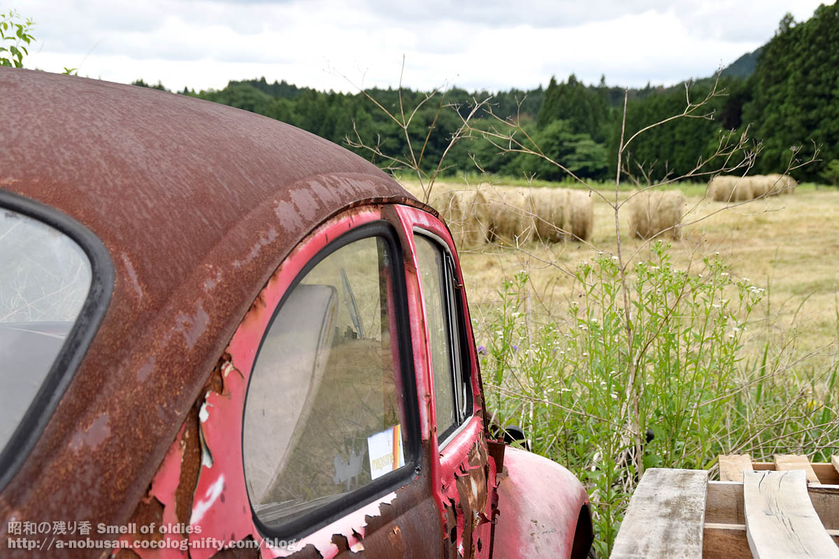 Dsc_0156_rusty_red_vw_bug