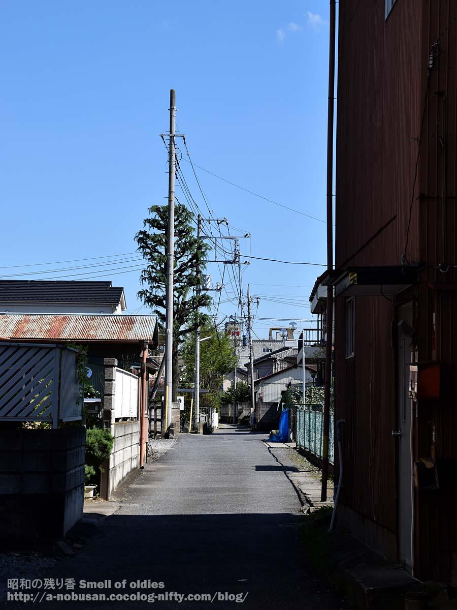 Dsc_0510_kazo_otsuji