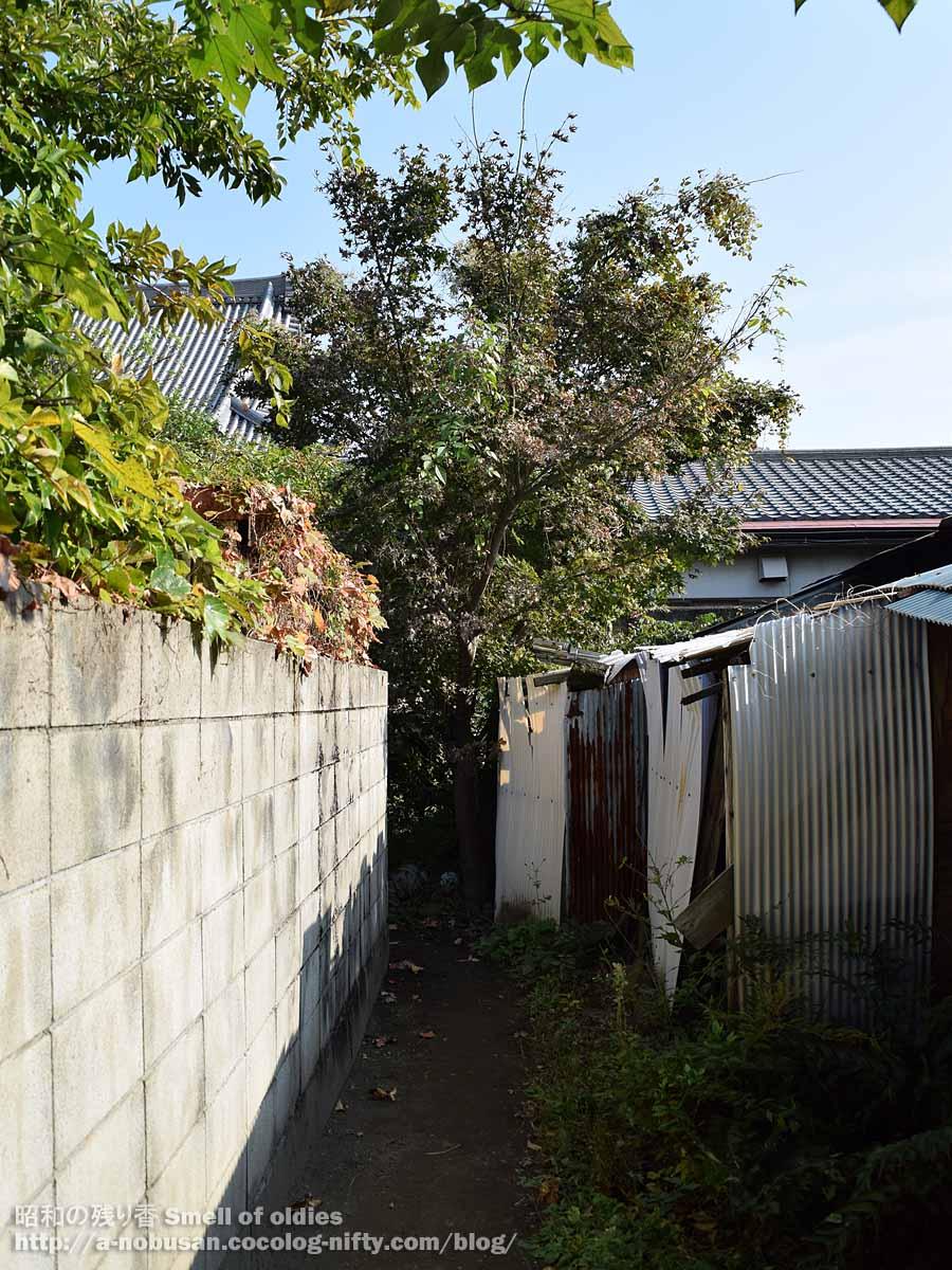 Dsc_0132_maebashi_showa_roji