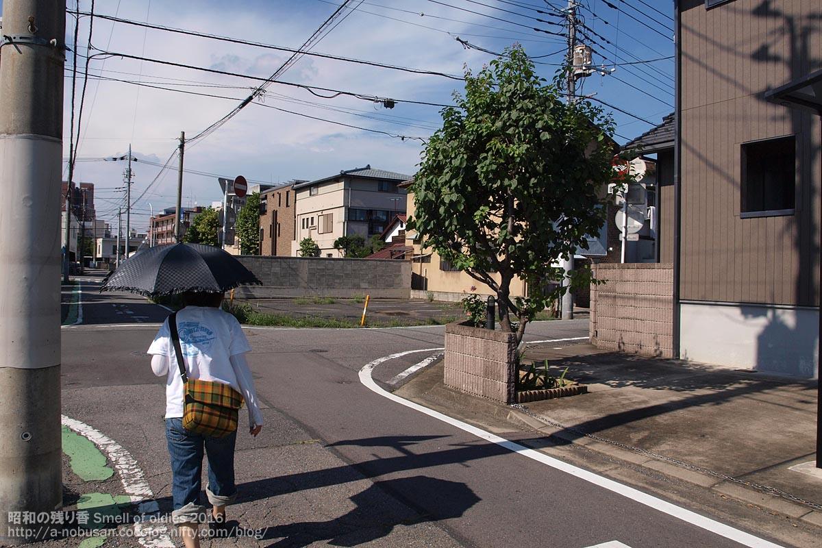 P7300004_summer_maebashi_2