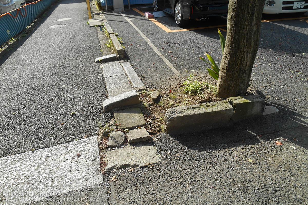 Dscn5597_old_road_in_tokyo