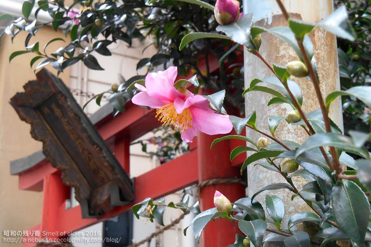Dscn5698_nishishinbashi_oinarisan