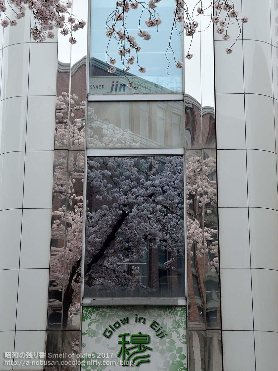Dsc_0130_sakura