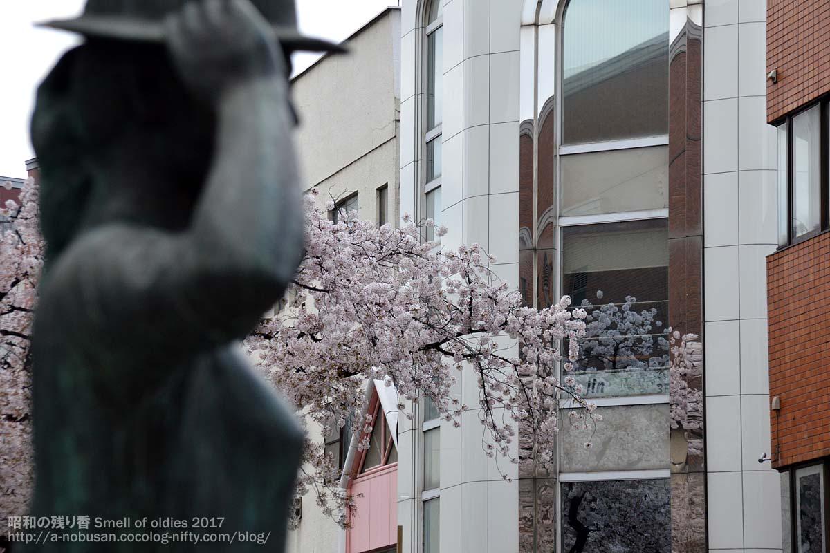 Dsc_0475_maebashi_sakura