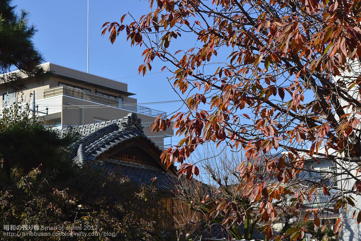 Dsc_0165_kawagoe_kouyou