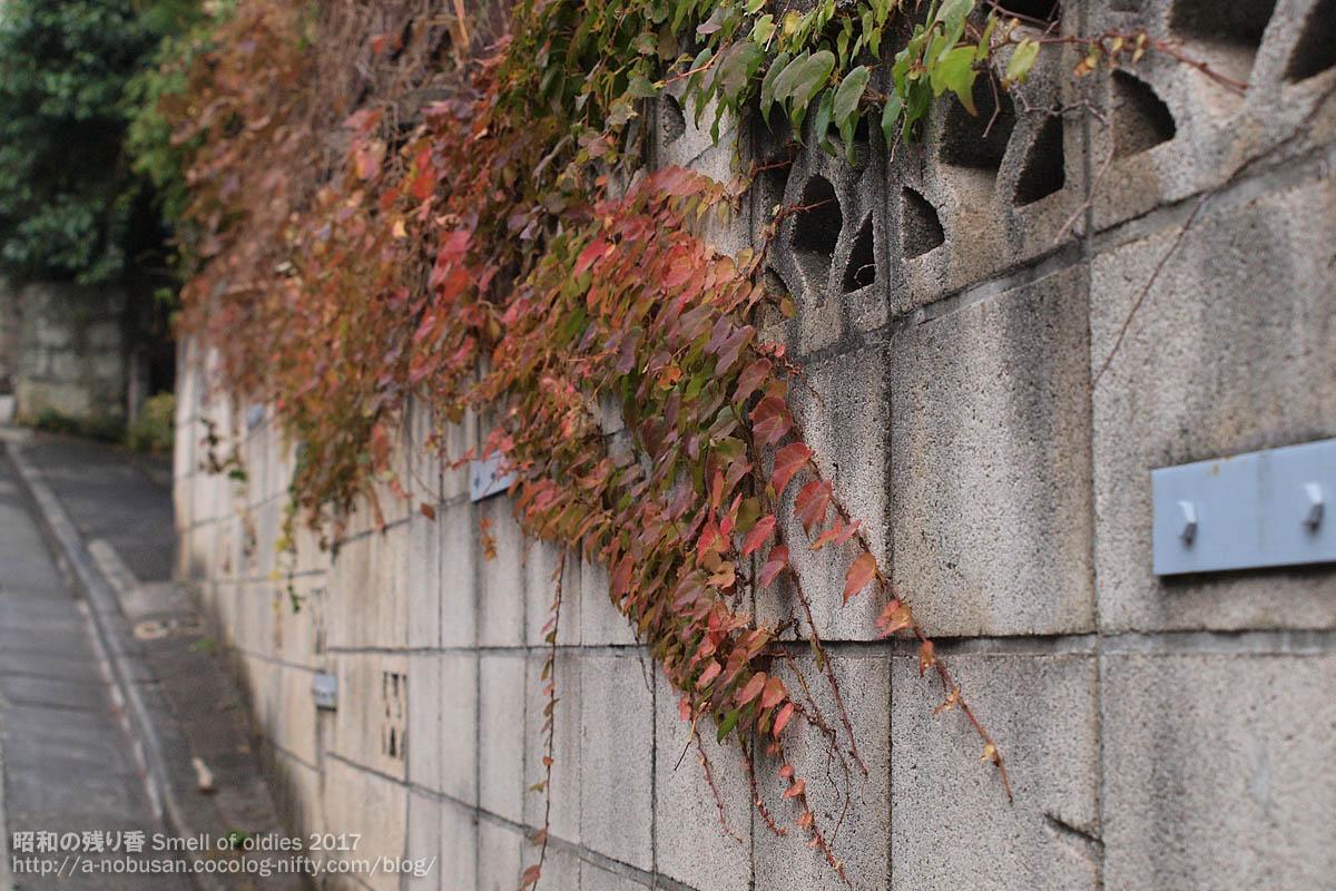 Pb280164_nishishinagawa__kouyou