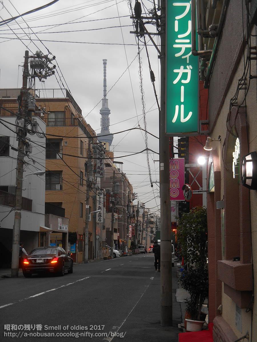 Dscn8150_tokyo_skytree_from_yoshiwa