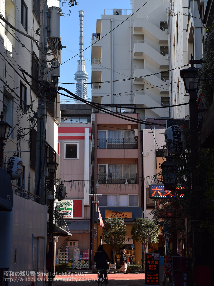 Dsc_0094_tanuki_dori_skytree