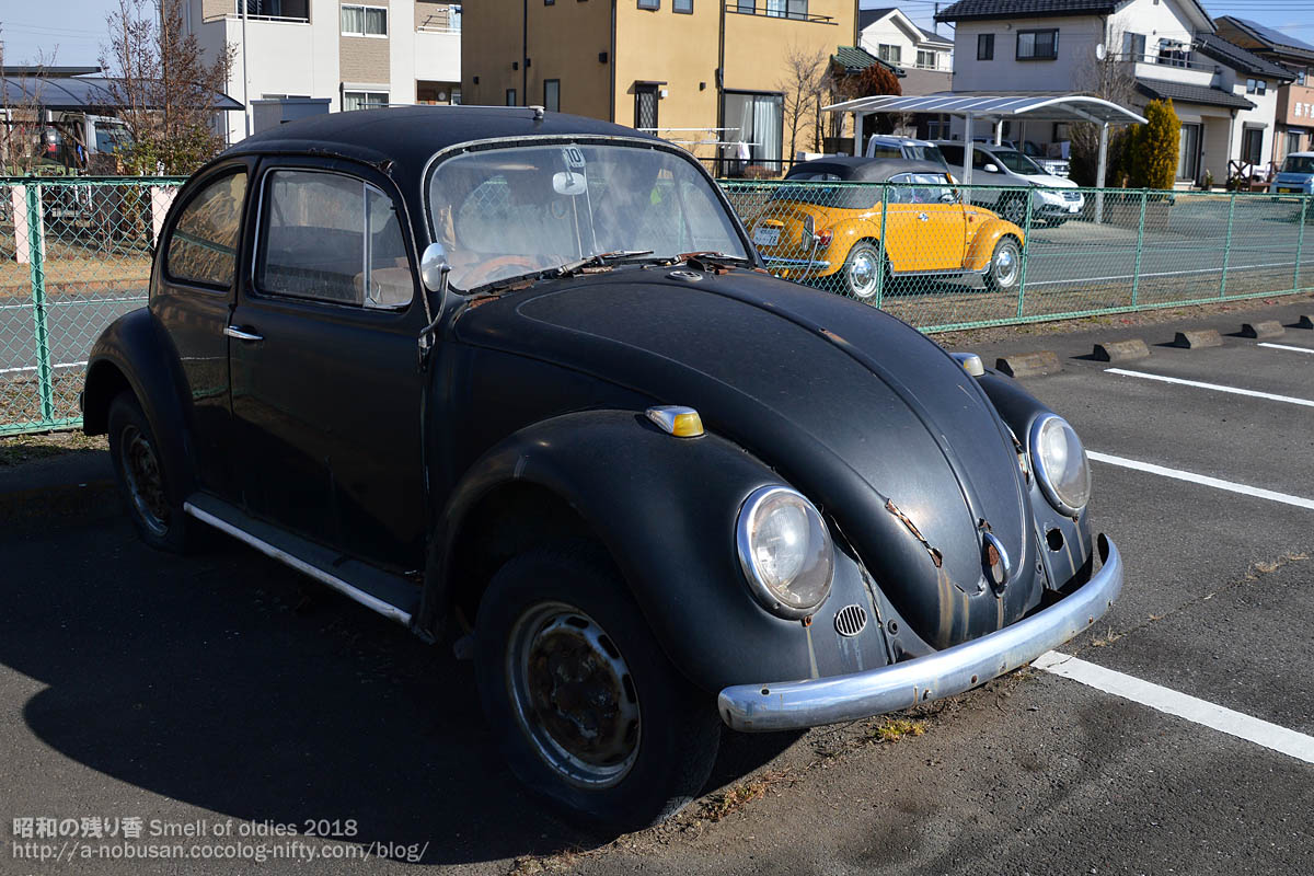 20180103_dsc_0343_also66vw_bug
