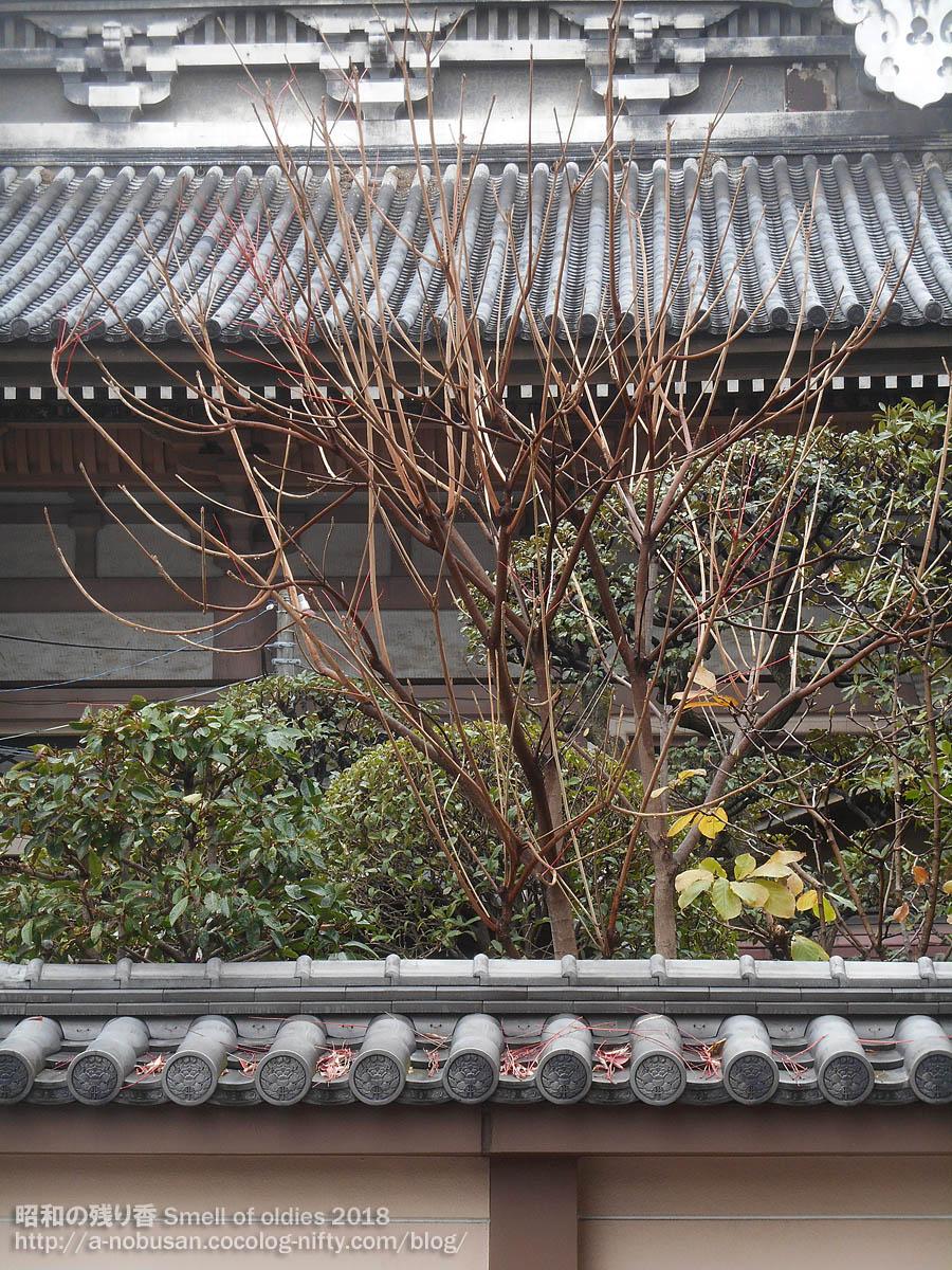 20171201_dscn7780_honganji_cold_rai