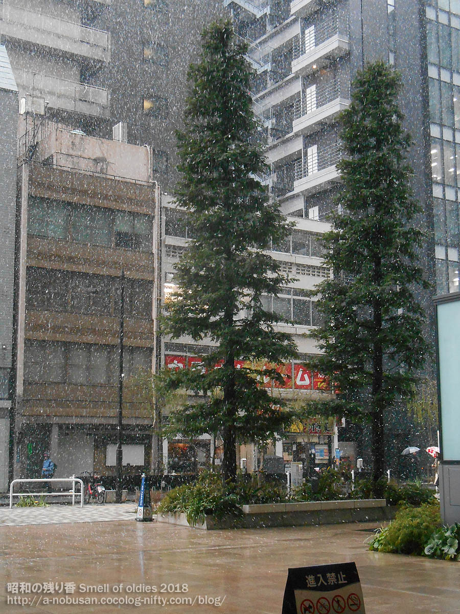 Dscn0889_snow_kyobashi_tokyo