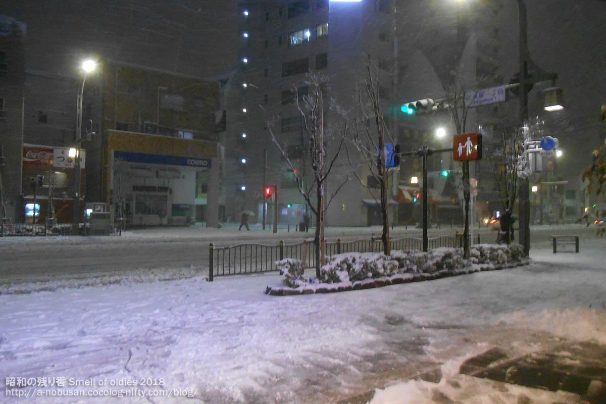 Dscn0914_snow_nishiasakusa