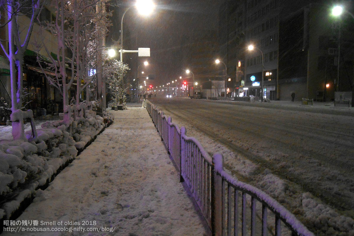 Dscn0925_snow_asakusadori