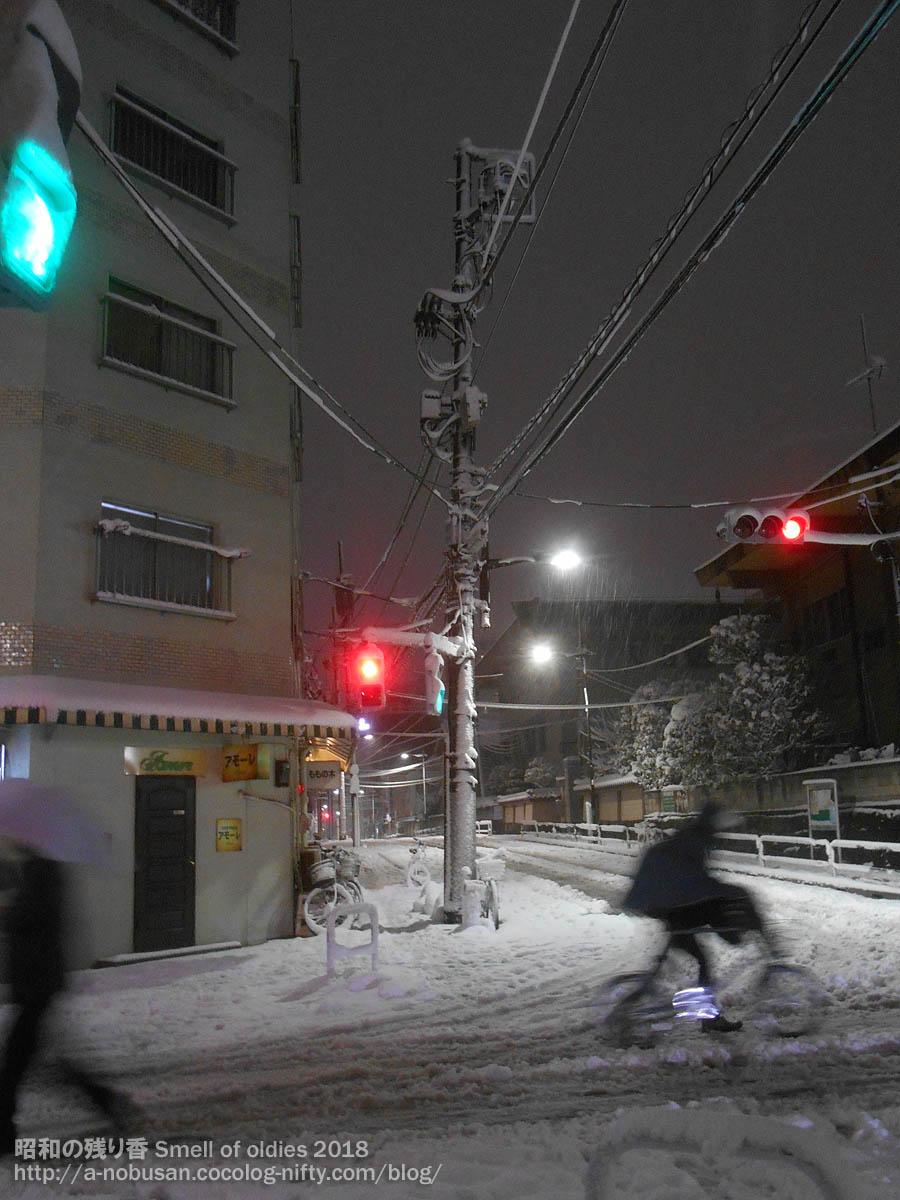 Dscn0942_snow_kikusuidori