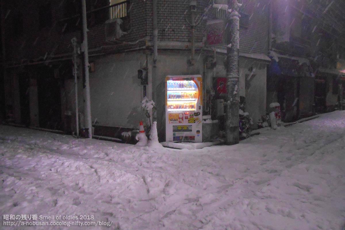 Dscn0958_snow_nishiasakusa