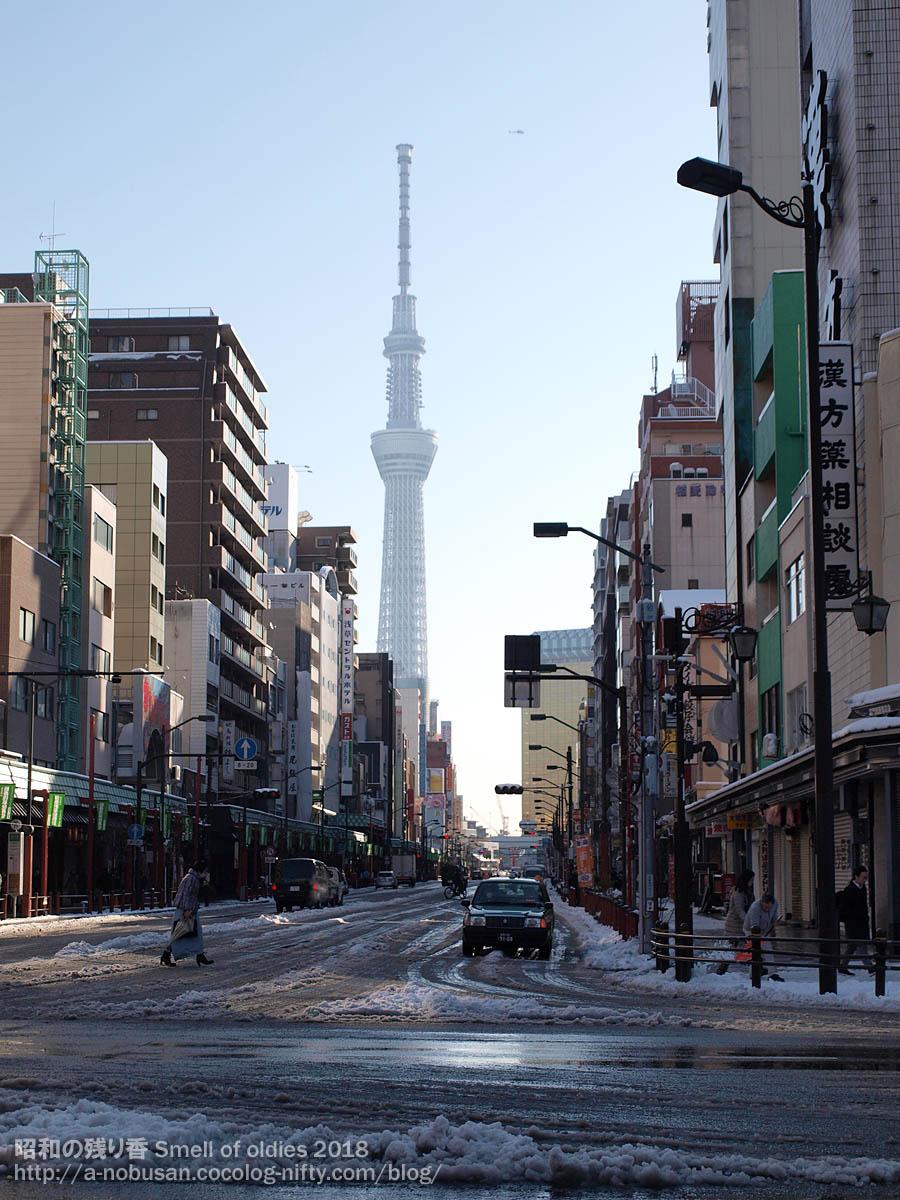 P1230272_snow_tokyo_sky_tree
