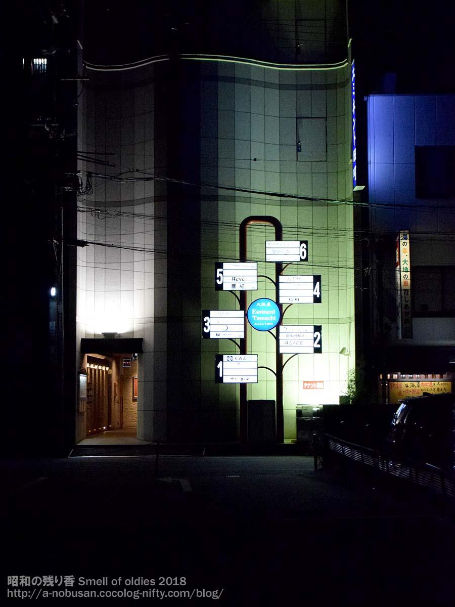20180728_dsc_0677_okayama_night
