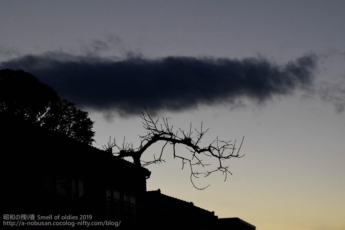 Dsc_0242_maebashi_kaki_sunset